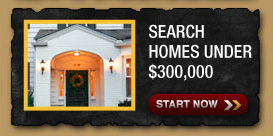 Search Homes Under $300,000