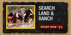 Search Land and Recreation