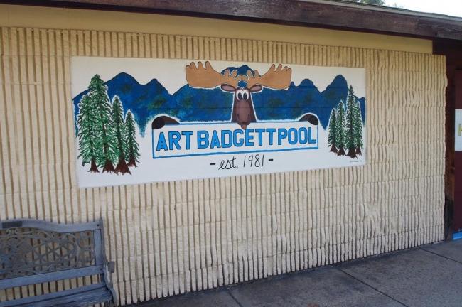 Art Badge Pool