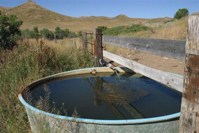Water in bull pasture